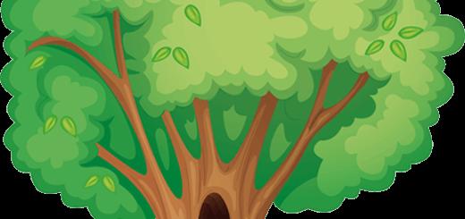 cuentos cortos de arboles y naturaleza