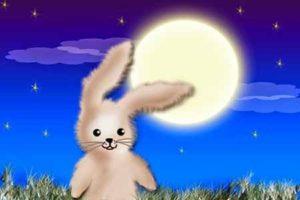 cuentos infantiles cortos de conejos