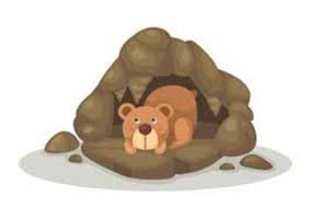 La fiesta del oso